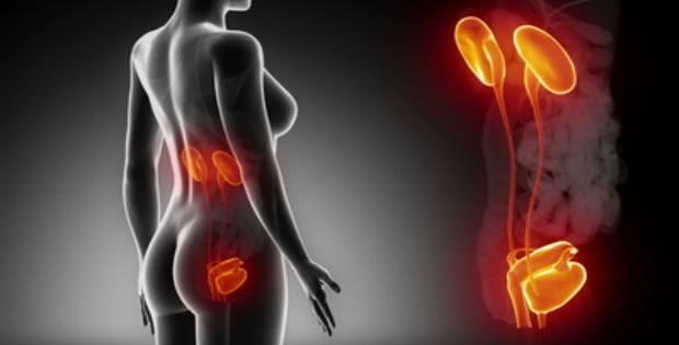 Plastyri para el tratamiento del dolor en la espalda